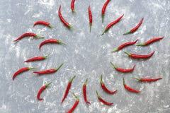 Het patroon van de Spaanse peperpeper op grijze abstracte achtergrond De hoogste vlakke mening, legt, kopieert ruimte stock foto's