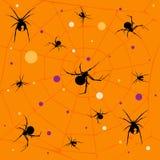 Het patroon van de spin Royalty-vrije Stock Afbeeldingen