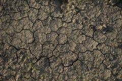 Het patroon van de textuuroppervlakte van droge gebarsten aarde Stock Foto's