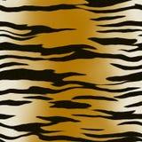 Het patroon van de tijger Royalty-vrije Stock Afbeeldingen