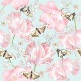Het patroon van de tulpenvlinder Royalty-vrije Stock Afbeeldingen