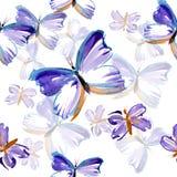 Het patroon van de vlinder Stock Afbeelding