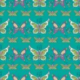 Het patroon van de vlinder Stock Foto's