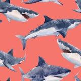 Het patroon van de waterverfhaai royalty-vrije illustratie