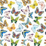 Het patroon van de waterverfvlinder Royalty-vrije Stock Fotografie