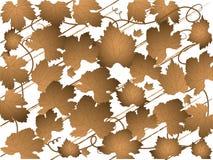 Het patroon van de wijnstok royalty-vrije illustratie