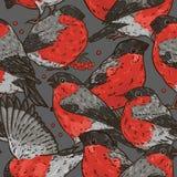 Het patroon van de wintergoudvinken vector illustratie
