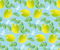 Het patroon van het citroenfruit Stock Afbeelding
