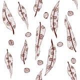 Het patroon van het verenornament Stock Afbeeldingen