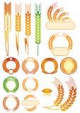 Het patroon van oren Stock Foto