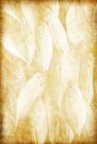 Het patroon van vissen op oud grungedocument Royalty-vrije Stock Foto