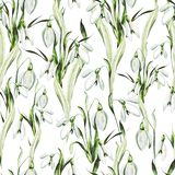 Het patroon van het waterverfhuwelijk met sneeuwklokjebloemen stock illustratie