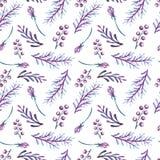 Het Patroon van waterverfviolet leaves and berries seamless Royalty-vrije Stock Afbeeldingen
