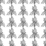 Het patroon zwarte verticaal van de bloemiris stock illustratie