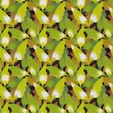 Het patroonachtergrond van bladeren stock fotografie