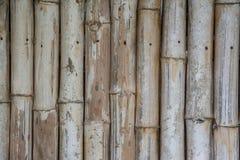 Het patroonachtergrond van de bamboemuur Royalty-vrije Stock Afbeeldingen