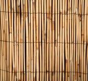 Het patroonachtergrond van het bamboe Royalty-vrije Stock Foto's