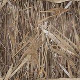 Het patrooncamouflage van het waterriet voor eendjager Stock Foto
