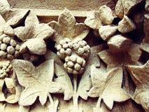 Het patroonspruit van de kleiboom in sepia Stock Foto's