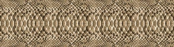Het patroontextuur van de slanghuid naadloos herhalen Vector Textuurslang Modieuze druk modieuze en modieuze achtergrond Stock Foto's