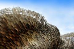 Het Paviljoen van Expo Spanje van de Wereld van Shanghai Royalty-vrije Stock Afbeelding