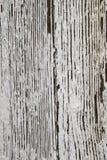 Het pellen Witte Verftextuur Als achtergrond. stock fotografie