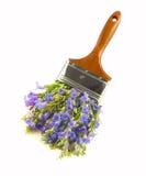 Het penseel van Wildflower Royalty-vrije Stock Fotografie