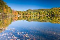 Het perfecte landschap van de de herfstoever van het meer Royalty-vrije Stock Foto's