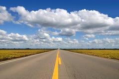 Het Perspectief van de weg Stock Fotografie