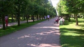 Het Petergof-fonteinpark, de parkweg stock footage