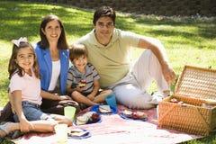 Het picnicing van de familie. royalty-vrije stock foto