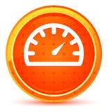 Het pictogram natuurlijke oranje ronde knoop van de snelheidsmetermaat stock illustratie