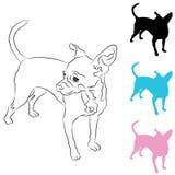 Het Pictogram van de Chihuahuahond Stock Foto