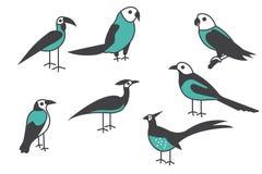 Het Pictogram van de vogel Reeks van verschillende vogel vectorillustratie stock illustratie