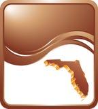 Het pictogram van Florida op de achtergrond van de bronsgolf vector illustratie
