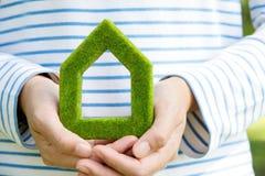 Het pictogram van het Ecohuis Stock Afbeeldingen