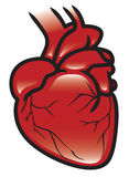 Het Pictogram van het hart Royalty-vrije Stock Afbeeldingen