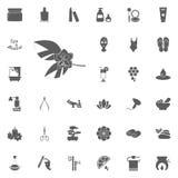Het pictogram van therapiebloemen Kuuroord en Recreatie vastgestelde pictogrammen Reeks van 33 kuuroordpictogrammen stock illustratie