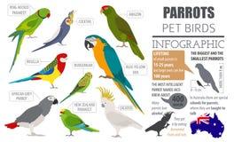 Het pictogram vastgestelde vlakke die stijl van papegaairassen op wit wordt geïsoleerd Gezelschapsvogels c Royalty-vrije Stock Foto's