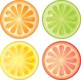 Het pictogramreeks van citrusvruchten Stock Foto's