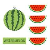 Het pictogramreeks van het watermeloenfruit Ronde watermeloen Rode plak met zaden op een rij Halve besnoeiing Gezond voedsel Vlak stock illustratie