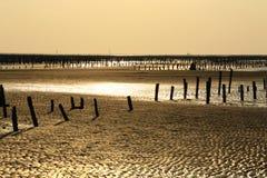 Het plaatsen Sunshines over Stranden Stock Afbeelding