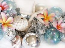 Het plaatsen van Kerstmis van het strand Royalty-vrije Stock Afbeelding