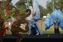 HET PLAN VAN DE BATIKcarnaval VAN 2015 SOLO Stock Afbeelding