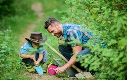 Het planten van bloemen Weinig helper in tuin De Familie van het landbouwbedrijf Weinig jongen en vader op aardachtergrond Het tu stock fotografie