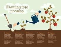 Het planten van boomproces, bedrijfsconcept Stock Foto