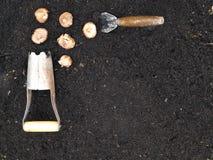 Het planten van de Grens van de Hoek van Bollen Royalty-vrije Stock Fotografie