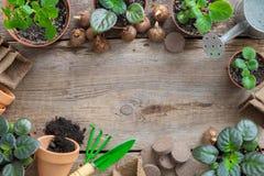 Het planten van ingemaakt bloemen en materiaal voor potteninstallaties Exemplaarruimte voor tekst De hoogste vlakke mening, legt royalty-vrije stock fotografie