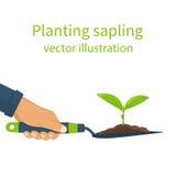 Het planten van jong boompje, concept vector illustratie