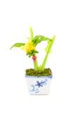 Het plastiek van de banaanboom Stock Afbeelding